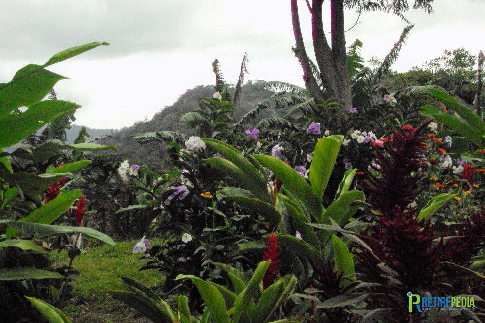 """Garden with a view: About 30 minutes drive from Matagalpa we visit """"La Tierra de los Sueños,"""" a project where Canadian born Jewel Hoff intends to create a small community for nature loving expats."""