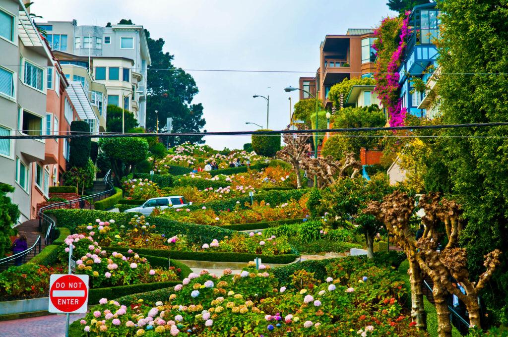 A photo showing Lombard street in San Francisco, one of the most expensive cities in California for real estate. The photo shows a steep hill with a winding road, flowerbeds, and several beautiful old houses