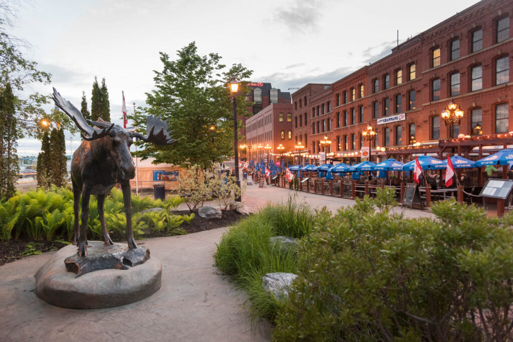 A row of sidewalk cafes and restaurants on the ground floor of red brick buildings in Saint John, New Brunswick, Canada. A statue of a moose sites in the foreground, along with some plants