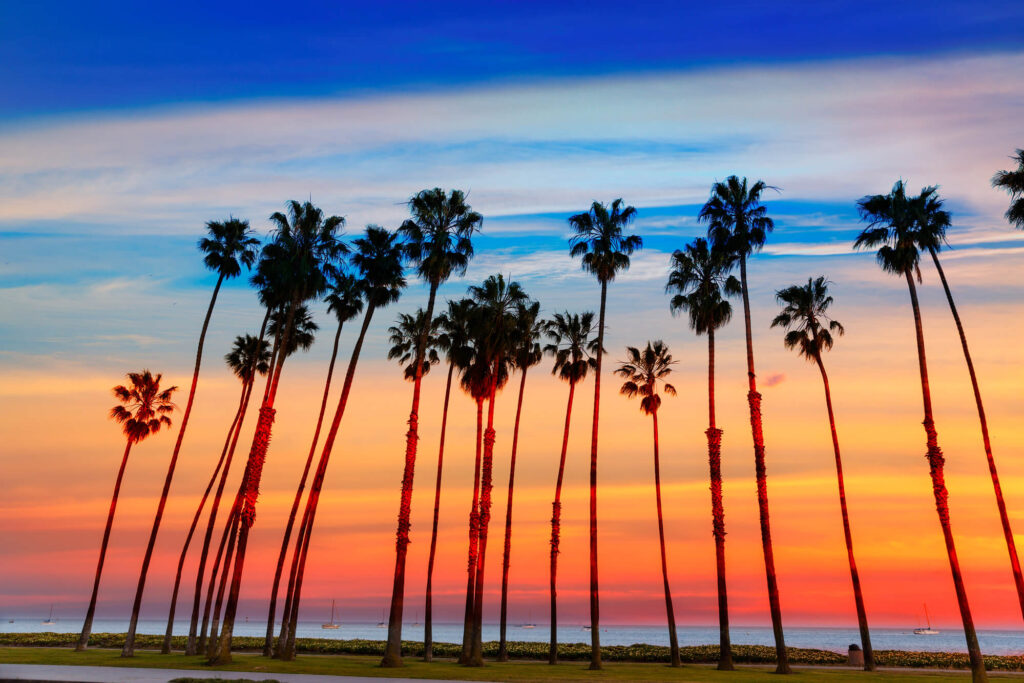 An image showing the Santa Barbara coastline at sunset. It features a beautiful red, orange, and blue sunset, several palm trees and yachts floating in the ocean