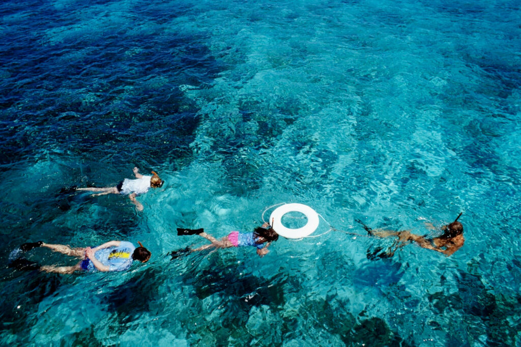 Four people snorkeling diving in crystal clear water at St. Croix, Virgin Islands