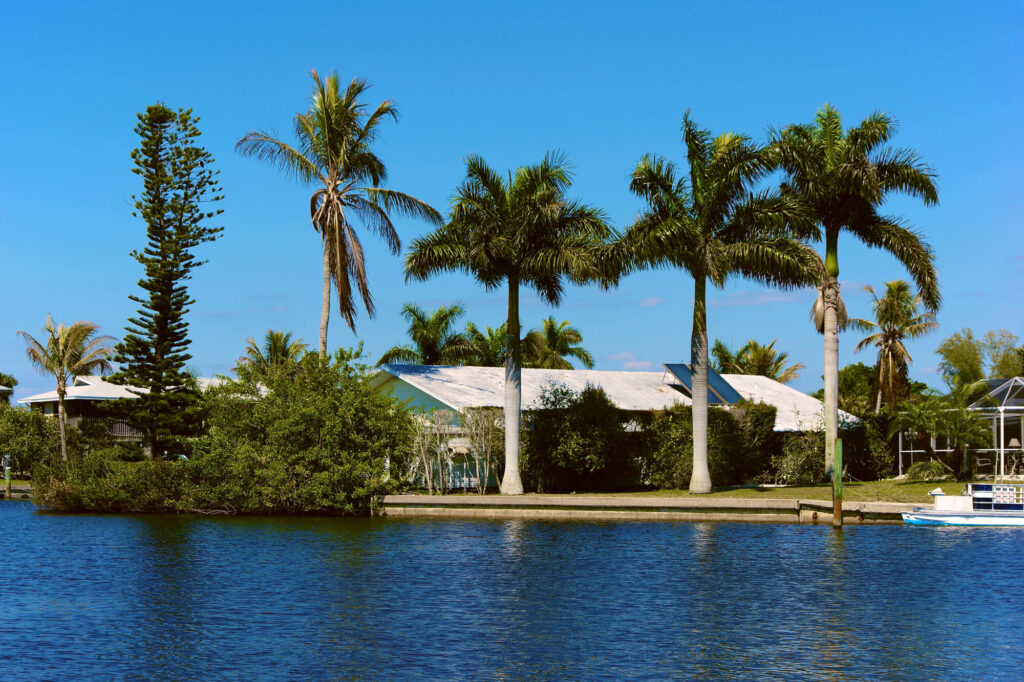 A photo of scenic bonita springs in Florida. It shows a small building surrounded by palm trees which is adjacent to natural springs