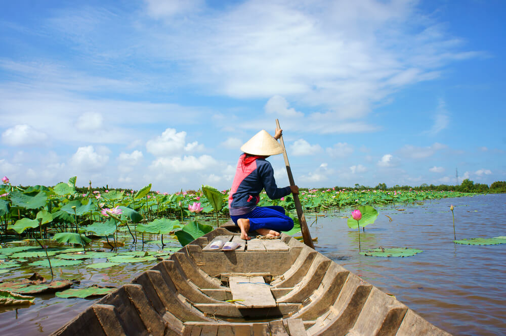 A photo of a Vietnamese person in a traditional row boat making their way across a river filled with lotus flowers