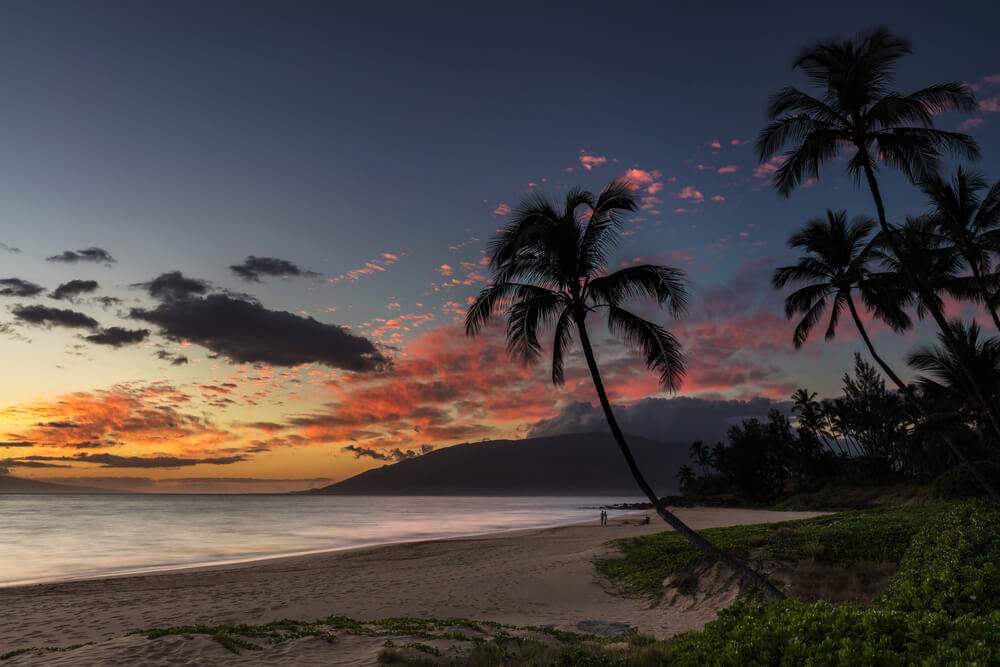 A picture of a beach at sunset near Kihei, Hawaii. It shows a small beach with several palm trees and an orange sunset