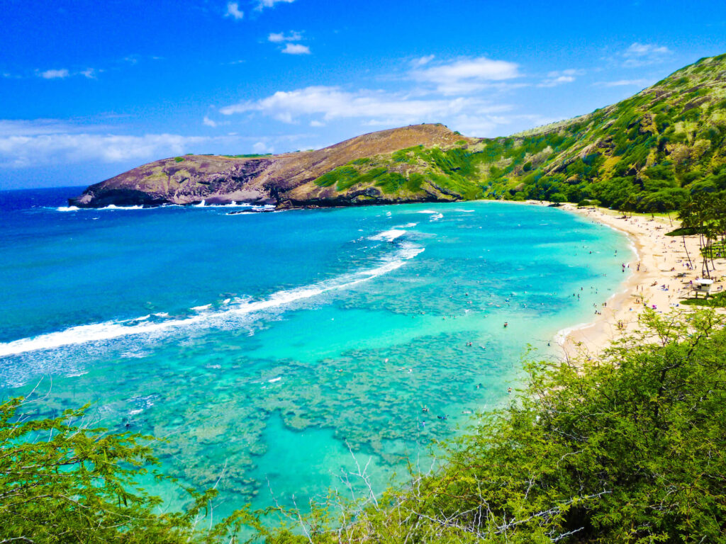An image of a beach cove in Hawaii. It shows a crescent shaped cove with crystal clear aqua blue water, a white sandy beach and palm trees. A rocky outcropping is at the top of the picture