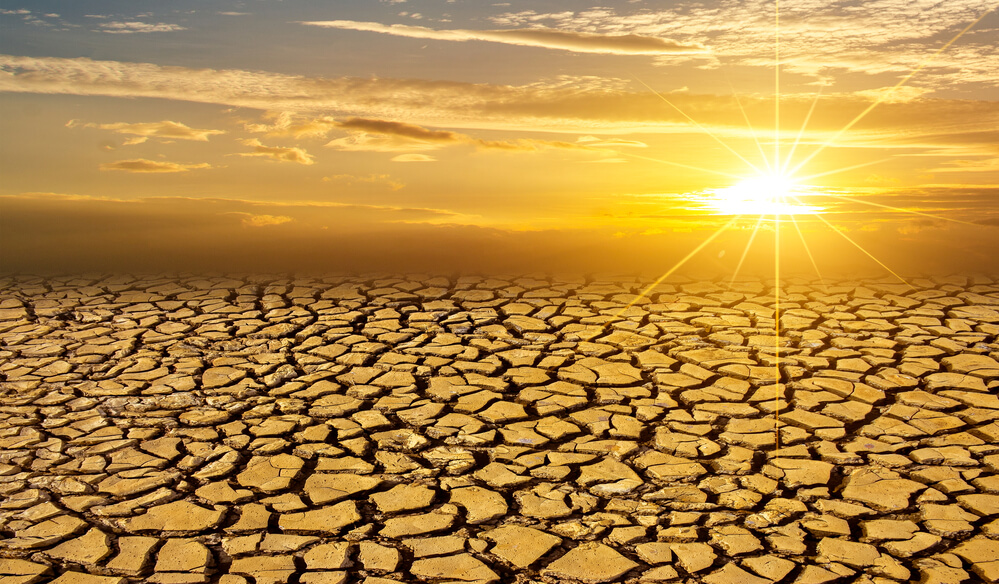 Mud, severely cracked from the dry heat, and the sun bright in the sky