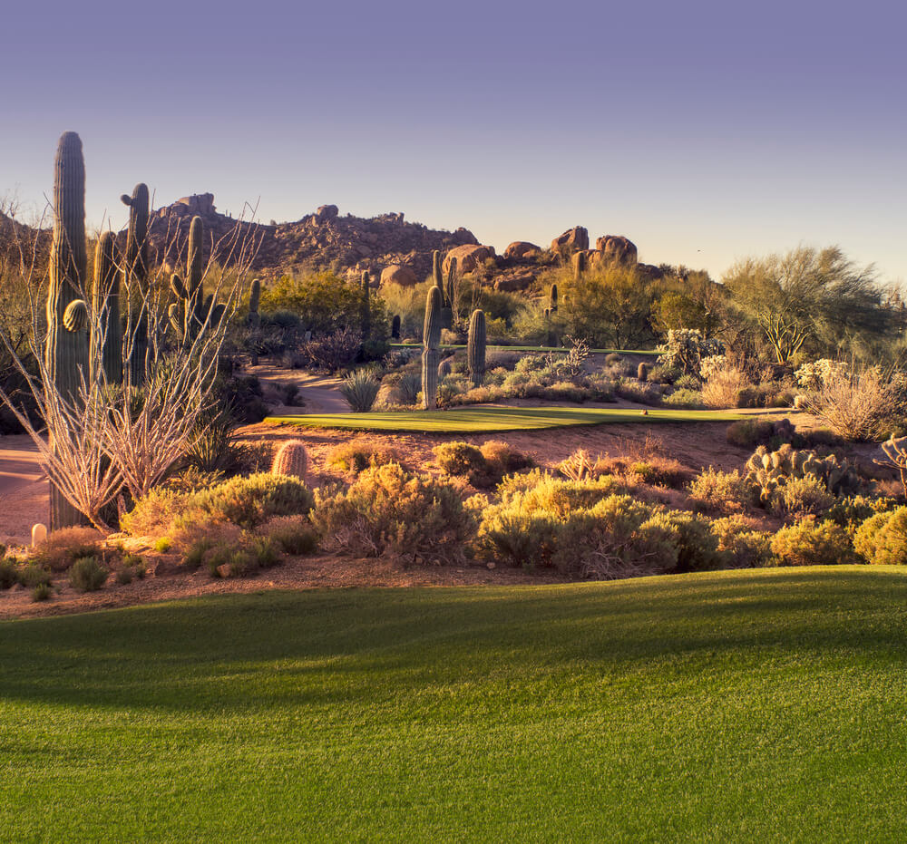 A Arizona golf course with nice green grass against rocky desert with cacti
