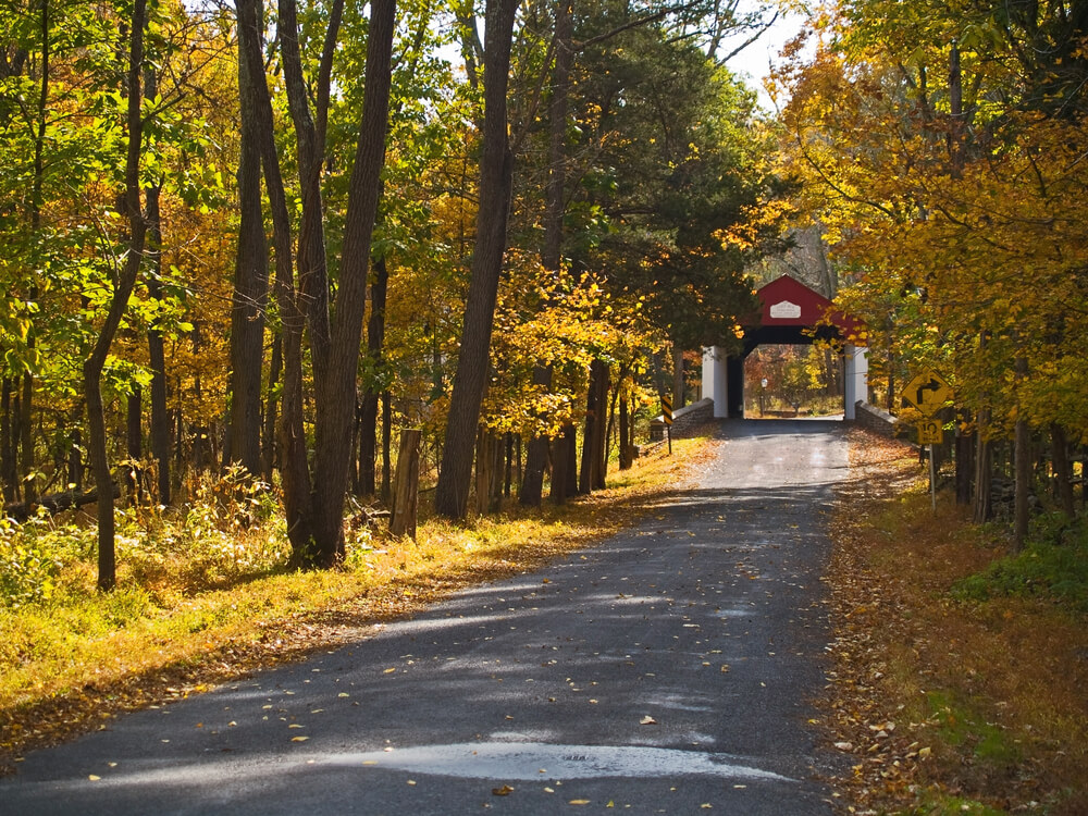 A photo of a gravel road. A red covered bridge can be seen in the back. Both sides of the road are lined with trees showing autumn foliage.