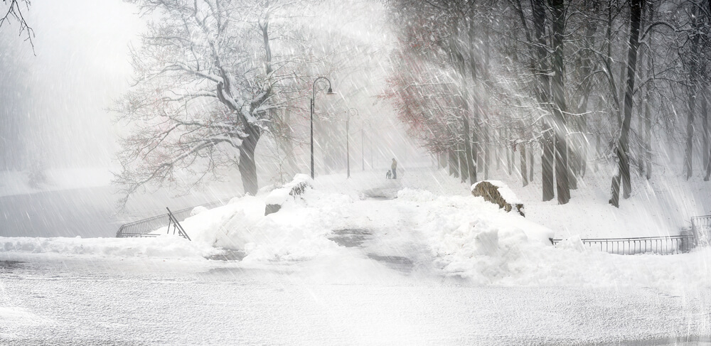 A photo taken during a blizzard. We can see trees and a person in the distance. Everything else is hard to see because of all the white snow blowing