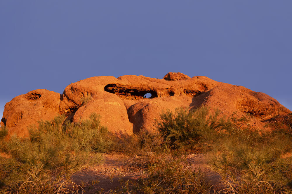 The famous rock hole in the Papago Park. A large red rock is surrounded by desert plants.