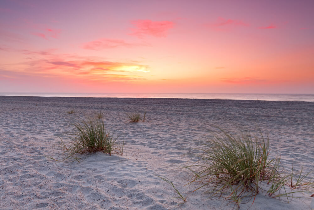 A photo of a sunset over a beach. A good amount of white sand, a few clumps of grass, and a bright orange/pink sunset